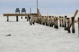 """إعصار """"هارفي"""" يقذف مخلوقا مرعبا يحير العلماء (صور)"""