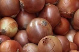 البصل يقمع انتشار سرطان المبيض