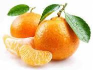 """هذه فوائد فاكهة """"اليوسيف أفندي"""""""