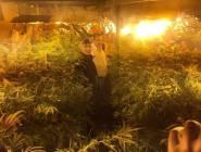 الخليل: الكشف عن بئر لزراعة الماريجوانا....بالصور
