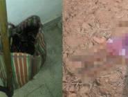 بالصور:قطع رأس زوجته بفأس ووضعه في حقيبة