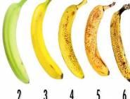 صور|كيف تختار الموز الجيد من لونه؟