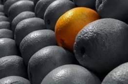 ما قصة تصدر هاشتاغ غيث مروان والبرتقالة المعفنة الترند في الأردن؟