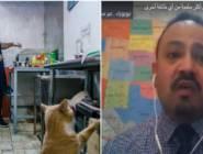 """""""خذ شطيرة البيض بسرعة فالتلفزيون المصري يناديني"""".. كيف أخفى المحلل الطباخ مهنته عن الجميع وكيف انكشفت حقيقته؟"""