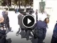 فلسطين : مستوطنون يقتحمون ساحات المسجد الاقصى