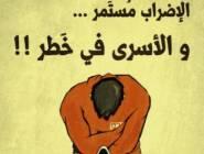 مثقفون مصريون يضربون عن الطعام تضامنا مع الاسرى