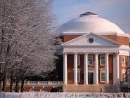 """تحقيق بشأن """"التمييز ضد البيض"""" في جامعات أميركية"""
