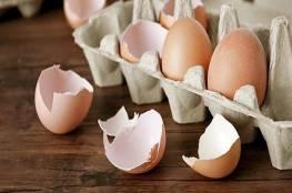 طبيبة تكشف احتواء قشر البيض على كنز غذائي