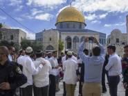 مستوطنو ومخابرات جيش الاحتلال يقتحمون المسجد الأقصى