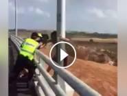 احباط محاولة انتحار لفتاة من فوق جسر شمال فلسطين المحتلة قبل قليل...