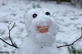 رجل ثلج يرتدي طقم أسنان جدة بريطانية