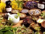 العلاج بالأعشاب.. هل يفيد الأطفال؟