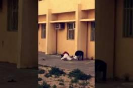 فيديو :طلاب يهربون من المدرسة بالقفز من النافذة وأحدهم يتعرض لموقف طريف!