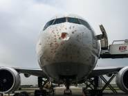 اصطدمت بطيور.. طائرة شحن تركية تهبط اضطراريا بإسطنبول