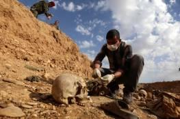 العراق: العثور على مقابر جماعية لأشخاص أعدمهم تنظيم الدولة