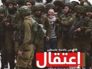 الاحتلال يعتقل 12 مواطناً من مناطق متفرقة