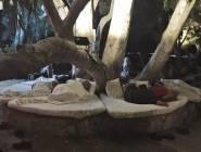 بالصور والفيديو - زلزال يجبر نجوم تركيا على النوم في الشارع!!