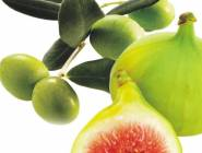 هل تعلم ما هي فوائد أكل التين والزيتون معًا؟