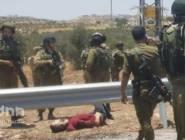 استشهاد شاب فلسطيني وإصابة جندى اسرائيلي في عمليه دهس جنوب بيت لحم