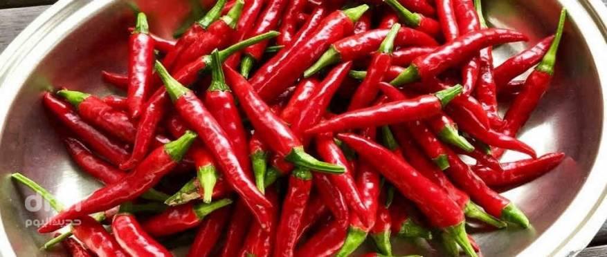 cayenne-pepper-1024x435