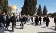 #فيديو من اقتحام 35 مستوطنا المسجد الأقصى في فترة الاقتحامات الصباحية.