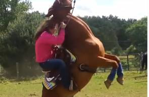 يا الهي, هذا الحصان لن يتم ترويضه!