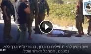 #فيديو: اللحظات الأولى عقب استشهاد الفتى عيسى طرايره (16عامًا) برصاص الاحتلال قرب بلدة بني نعيم بالخليل صباح اليوم.