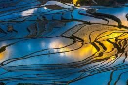 10 صور تظهر جمال حقول الأرز في الصين!