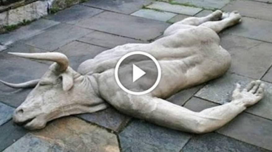 فيديو| 10 مقاطع لمخلوقات غريبة حيرت مشاهديها!