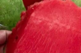 ماذا قال الرسول عليه السلام عن البطيخ ؟؟
