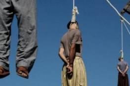 2015 عام الجلادين.. أحكام الإعدام تصل لأعلى مستوى في العالم منذ ربع قرن