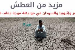 العطش للجميع.. مصر وإثيوبيا والسودان في مواجهة موجة جفاف قاتلة