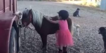 فيديو:محاولات متكررة لطفلة صغيرة تحاول الصعود على حصانها