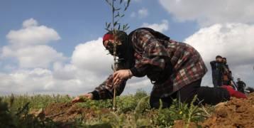 """في ذكرى """"يوم الأرض"""".. الاحتلال يستغل نحو 76% من مجمل مساحة الضفة المصنفة (ج)"""