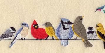 """هذا هو أصل مقولة """"الطيور على أشكالها تقع""""!"""