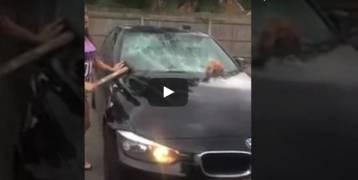فيديو: فتاة تعاقب زوجها الخائن بطريقتها الخاصة!!