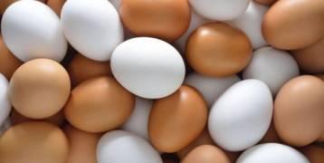 خبراء التغذية  :  ما فوائد تناول 6 بيضات أسبوعيا؟