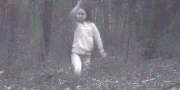 عائلة نصبت كاميرا في غابة .. وما وجدوه في الصور أصابهم بالرعب !