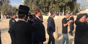 القدس : المتطرف غليك يتقدم عشرات المستوطنين باقتحام الأقصى