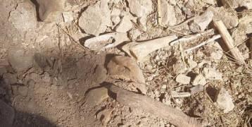 ماذا جرى امس في مقبرة باب اليوسفية في القدس