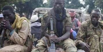 مقتل 9 مدنيين في هجوم لـ بوكو حرام في تشاد