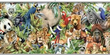 بعض الحقائق الغريبة عن الحيوانات