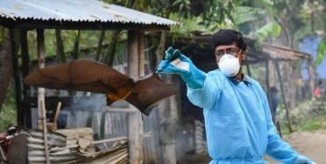 كل ما تريد معرفته حول «فيروس نيباه».. وهل سيتحول لوباء عالمي؟