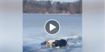 عملية انقاذ هائلة لكلب  سقط في الجليد