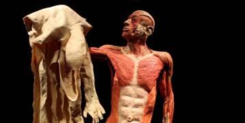 99 حقيقة مذهلة لم تكن تعلمها عن الجسم البشري