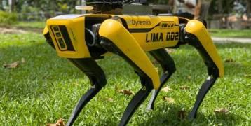 «روبوت كلب» يتفحص أسلاك الكهرباء