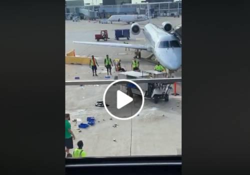 شاهد عربة طعام تخرج عن السيطرة في مطار شيكاغو