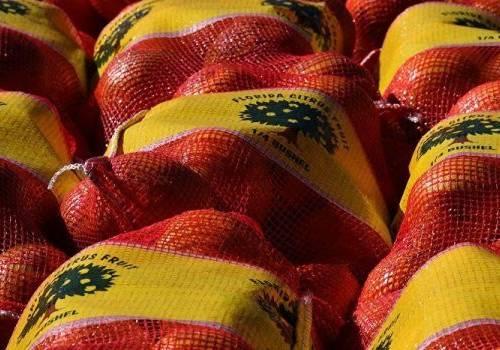 لماذا يباع البرتقال في أكياس شبكية حمراء ؟